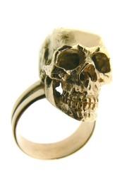 cranio anello_800x600