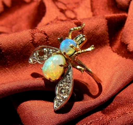 fly ring_800x600