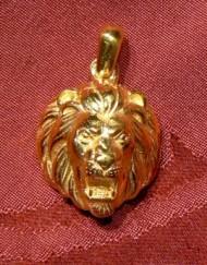 head lion_800x600